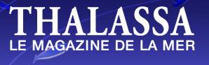 Thalassa / France3